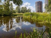 'S-Gravenweg 1 A in Nieuwerkerk A/D IJssel 2911 CD