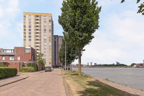 Vegastraat 57 in Rotterdam 3077 BV
