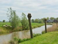 in Zuidhorn 9801 WG