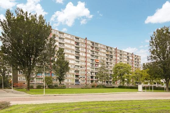 Van Goudoeverstraat 95 in Gorinchem 4204 XD