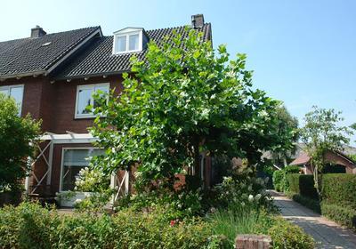 Meeuwenlaan 17 in Woerden 3443 BB