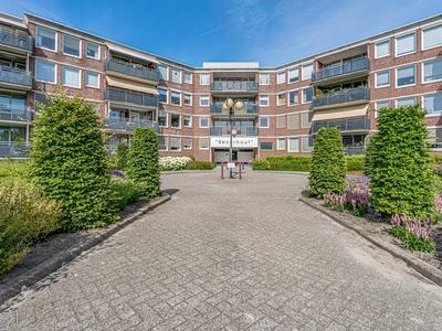 Hof Van Luxemburg 224 in Alkmaar 1825 TJ