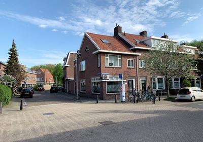 Pieter Nieuwlandstraat 86 in Utrecht 3514 HL
