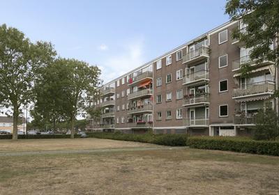Maassingel 192 in 'S-Hertogenbosch 5215 GJ