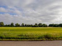 Sparrendreef in Oostrum 5807 EK