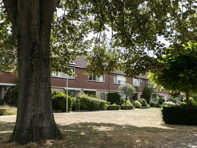 Wethouder Winterinkstraat 5 in Rheden 6991 BJ