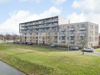 De Maaidorser 15 7 in Arnhem 6846 KX