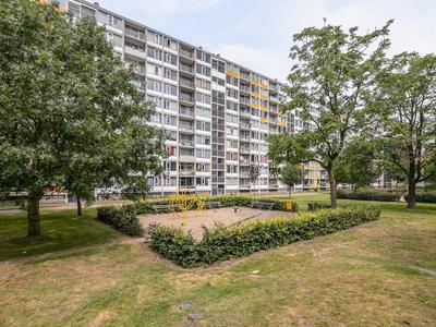 Dommeringdreef 139 in Utrecht 3562 AN