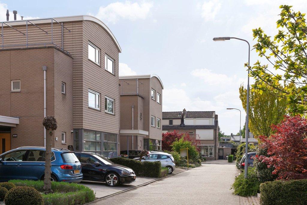 Ruijsstraat