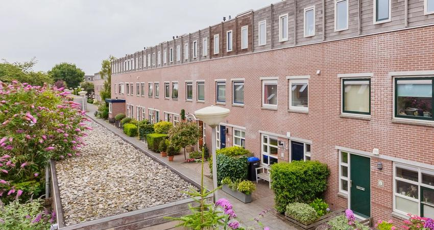 Hollandse Aak 3 in Velserbroek 1991 XG