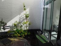 2E Schuytstraat 162 in 'S-Gravenhage 2517 XK