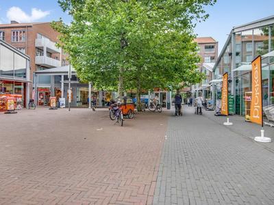 Citroenvlinder 14 in Utrecht 3544 DG