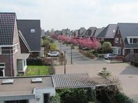 Vlijmenstraat 28 in Tilburg 5036 SV