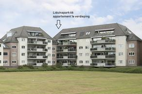 Liduinapark 66 in Hulst 4561 JW