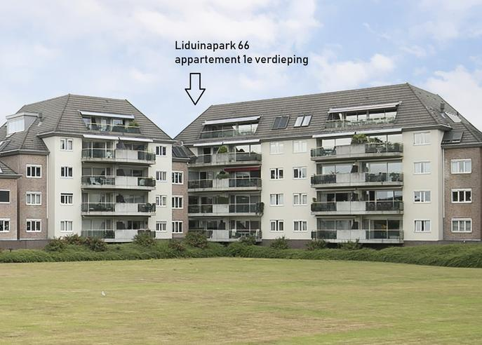 Liduinapark 66 in Hulst 4561 JW