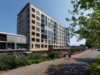 Lasserstraat 50 in Leiden 2321 PR