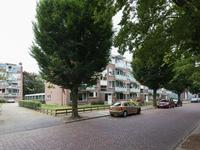 Beethovenlaan 450 in Zwolle 8031 CE