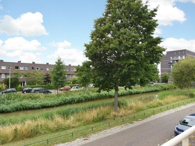 Zilverreigerstraat 1 in 'S-Gravenhage 2492 TC