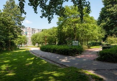Van Goudoeverstraat 165 in Gorinchem 4204 XG