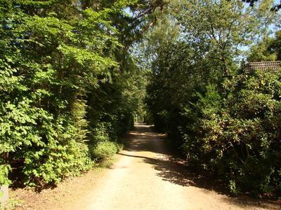 Ruurloseweg 30 82 in Zelhem 7021 HB