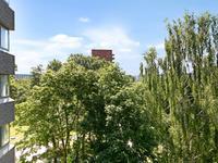 Gouden Leeuw 228 in Amsterdam 1103 KD