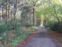 Paul Emsensstraat in Wouwse Plantage 4725 BD