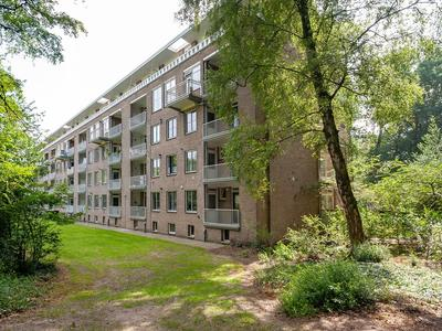 Bernhardlaan 9 3 in Arnhem 6824 LA