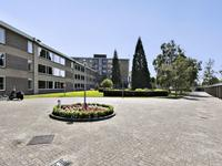Esschebaan 82 in Oisterwijk 5062 BD