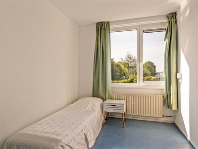 Sixmastins 38 in Stiens 9051 HD
