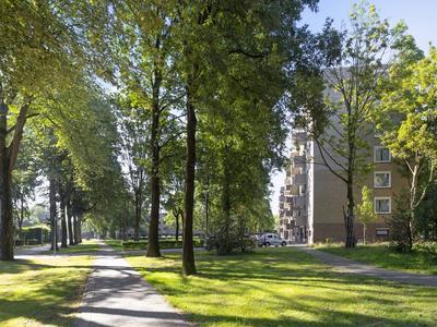 Friezenlaan 186 in Tilburg 5037 KN