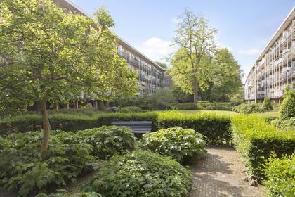 Willem De Zwijgerlaan 138 -Iii in Amsterdam 1056 JV