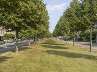 Verdilaan 221 in Nieuw-Vennep 2151 NB