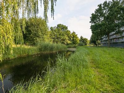 Marsdiep 81 in Alphen Aan Den Rijn 2401 XB