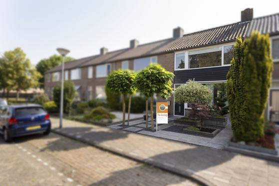 Mr. Sprenger Van Eykstraat 9 in Waalwijk 5142 AS