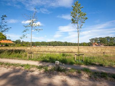 Kattenbergweg 1 -80 in Winterswijk 7101 BM