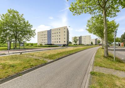 Siersteenlaan 594 in Groningen 9745 DV
