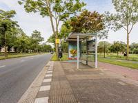 John F. Kennedylaan 41 in Rijswijk 2285 AB