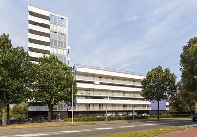 Vijfhagen 73 in Breda 4812 XT