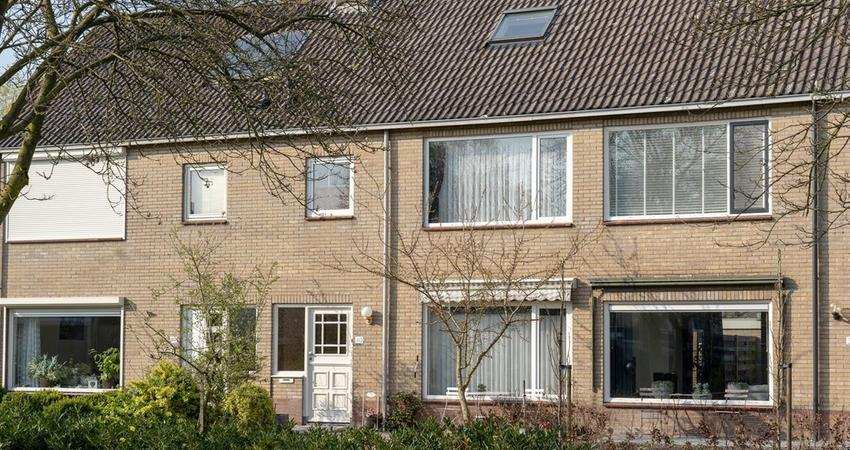 wilgenhof 4002