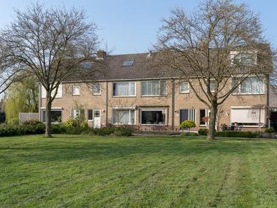 wilgenhof 4003