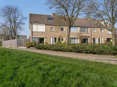 wilgenhof 4004
