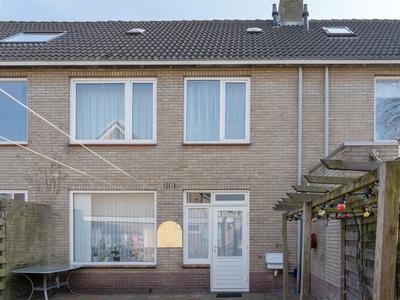 wilgenhof 4028