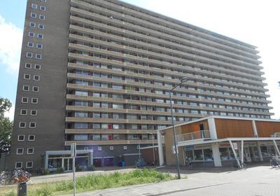 Hendrik Tollensstraat 148 in Delft 2624 BK