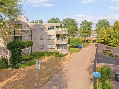 Mammoetveld 36 in Zwolle 8017 MA