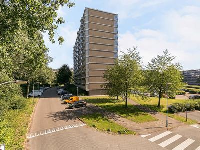 Jonkerbos 251 in Zoetermeer 2715 SZ