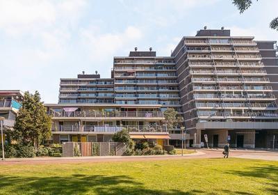 Zuiderterras 15 in Rotterdam 3083 BV