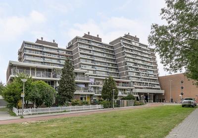 Zuiderterras 50 in Rotterdam 3083 BW