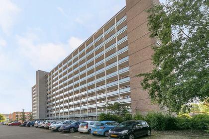 Akeleistraat 38 B in Spijkenisse 3202 GD