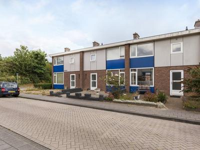 Baerkenstraat 32 in Doesburg 6981 JJ