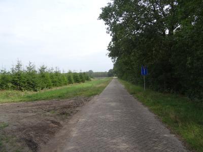 Koekoeksweg in Dwingeloo 7991